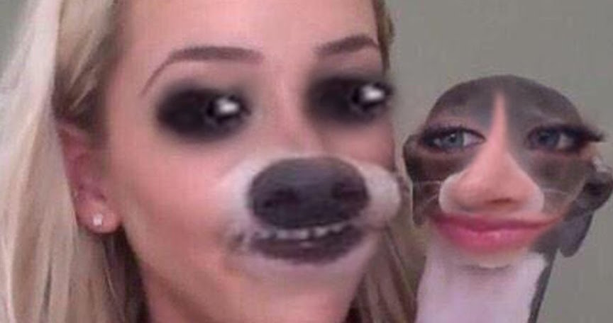 Pet To Owner Face Swaps That Went Horribly Wrong