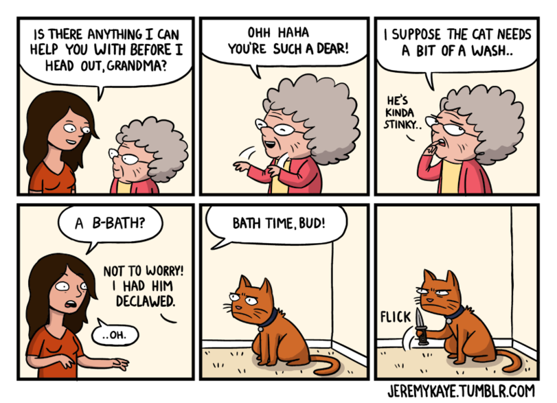 Funny Funny Funny Comics: 20 Comics Every Cat Owner Will Totally Get