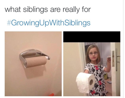 Annoying siblings essay