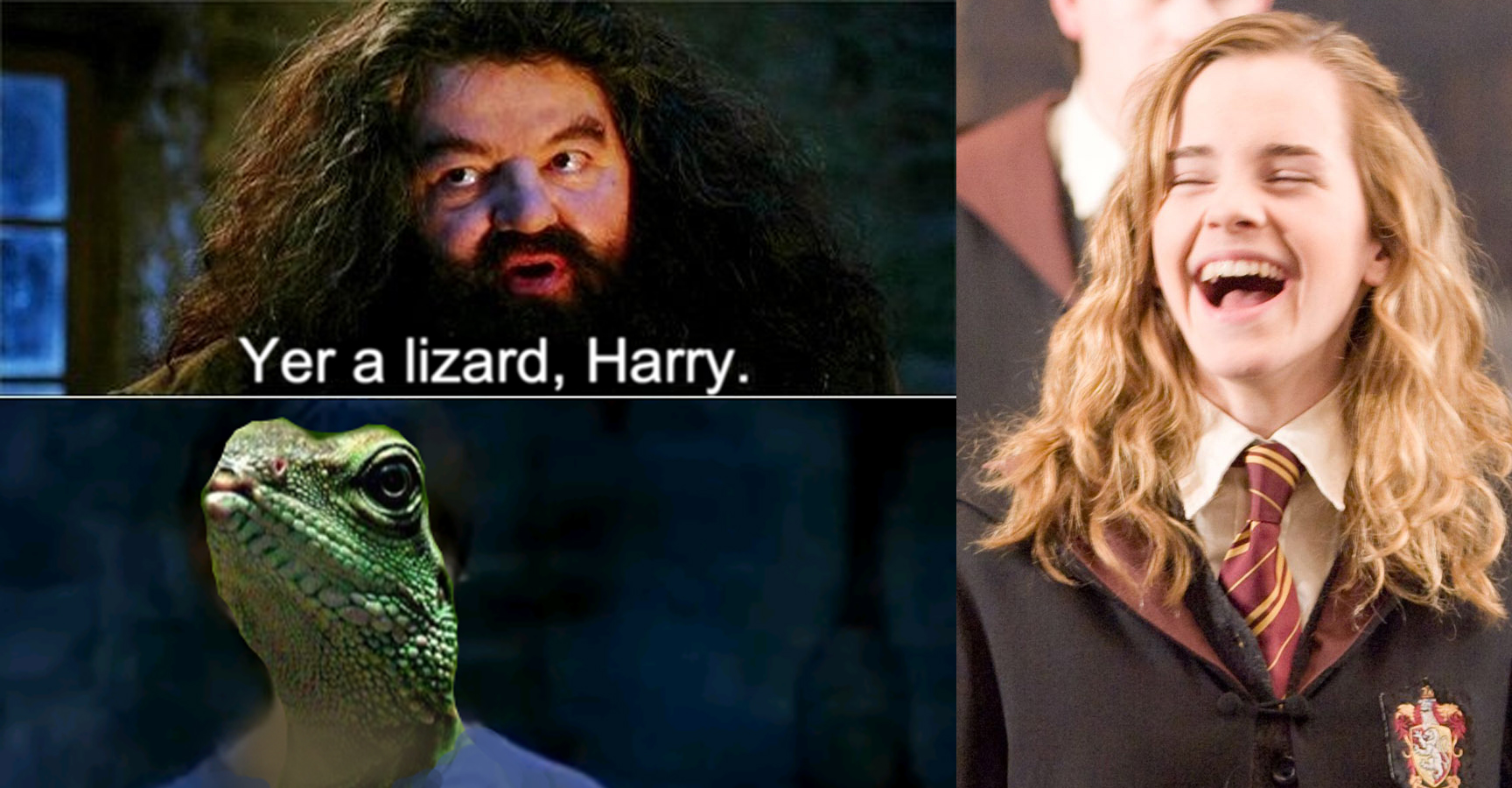 15 Hilarious Quot You Re A Wizard Harry Quot Memes That Will Make