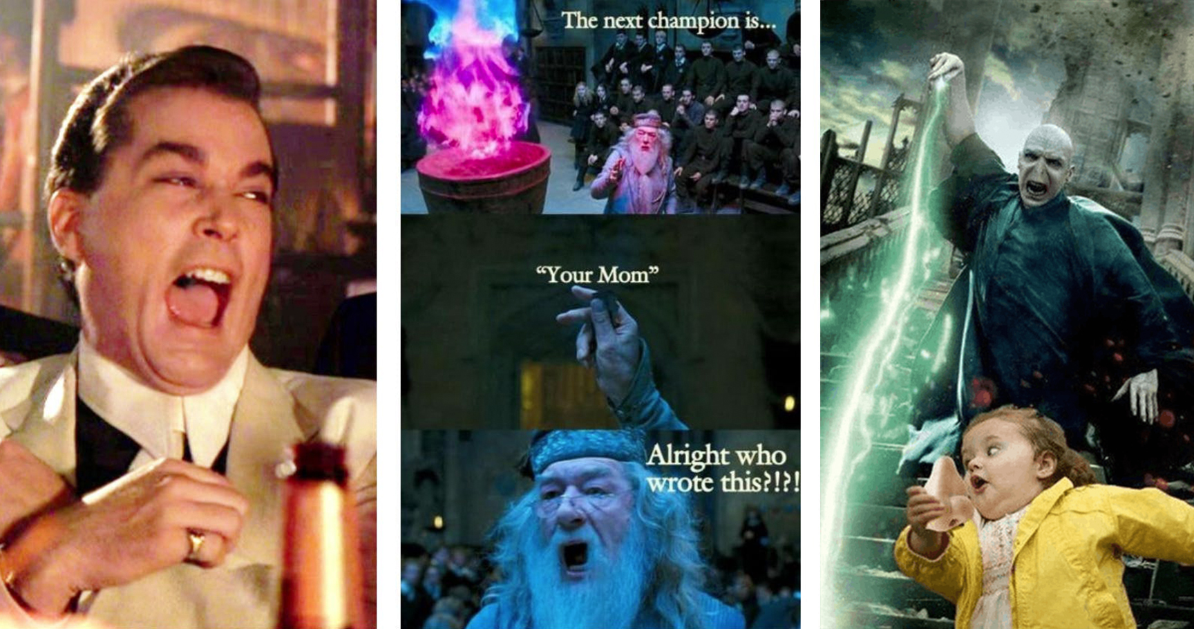 Just 20 Memes That Will Make Any Harry Potter Fan Laugh